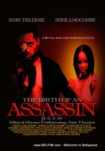 Birth of An Assasin Poster 1
